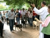 Blessing of the Animals 2011 1